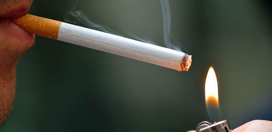 Duhan ne ubija samo ljude, već i prirodu