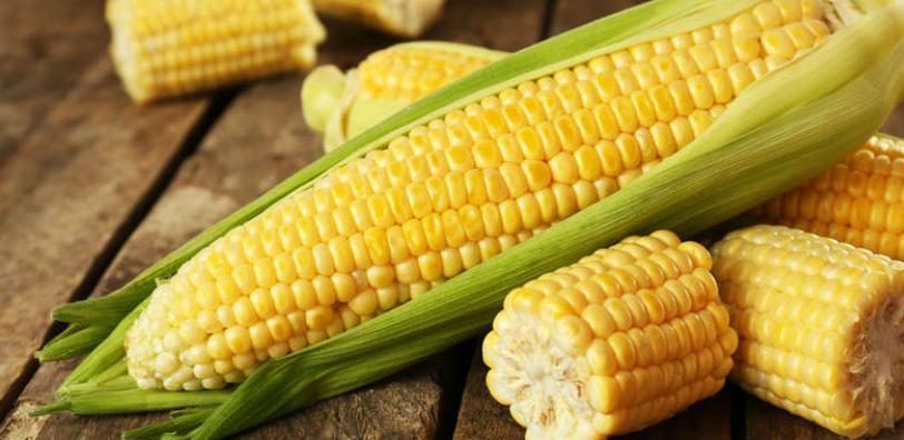 Povećana proizvodnja kukuruza, duhana, krompira, jabuka, šljiva...