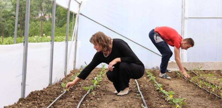 VTK BiH - Problemi kod izvoza svježeg voća i povrća iz BiH u EU