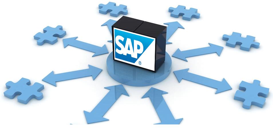 IUS LIFE: SAP Enterprise Resource Planning