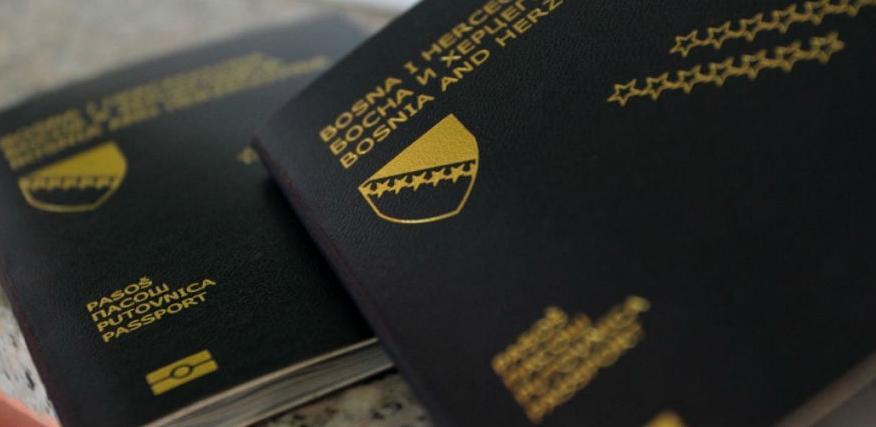 Njemačka za godinu dana odobrila 17.000 viza