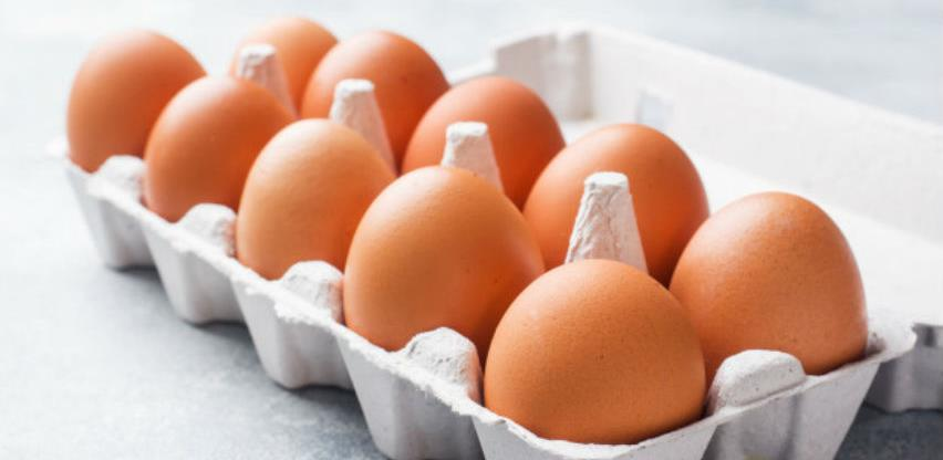 Izvoz jaja za preradu u EU otvara put izvozu drugih proizvoda