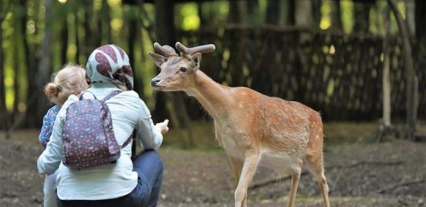 Uzgajalište jelena kod Živinica atrakcija za porodice sa djecom