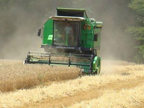 U zadruge učlanjeno samo pet odsto poljoprivrednika