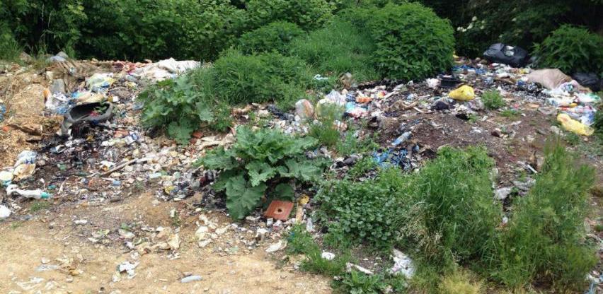 U BiH ne postoji mogućnost zbrinjavanja animalnog otpada po kategorijama