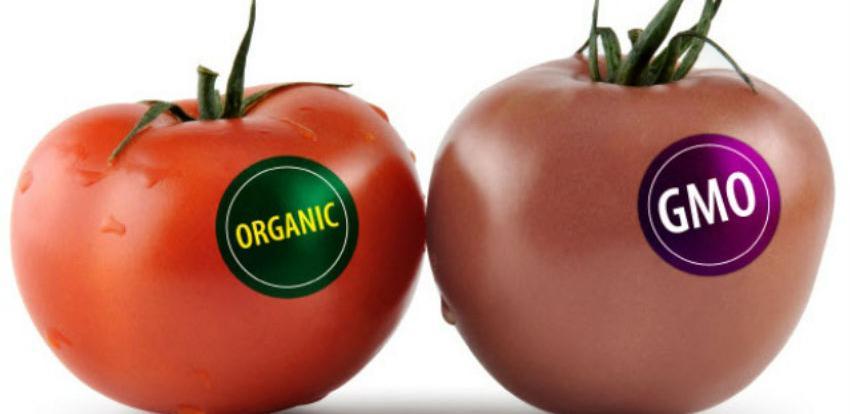 Centar za životnu sredinu: I domaći proizvodi sadrže GMO