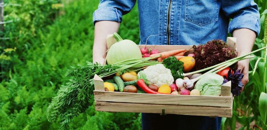 Za samo godinu dana do oznake bez GMO