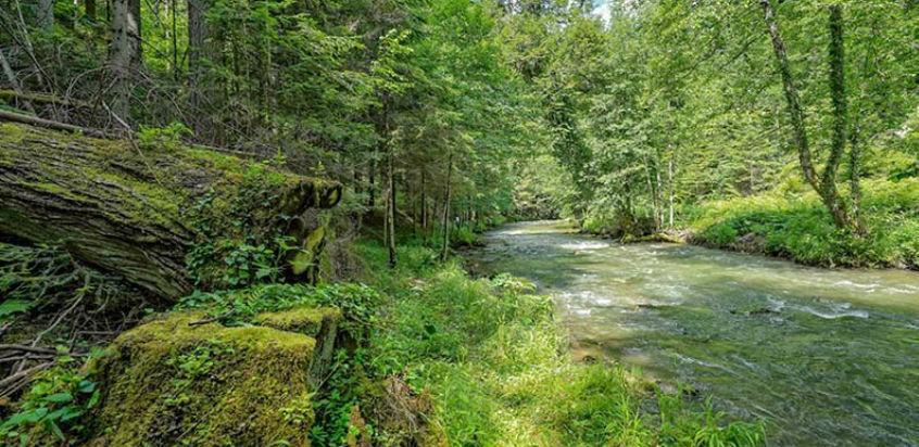 Bioštica, prirodni dragulj Sokolačkog kraja