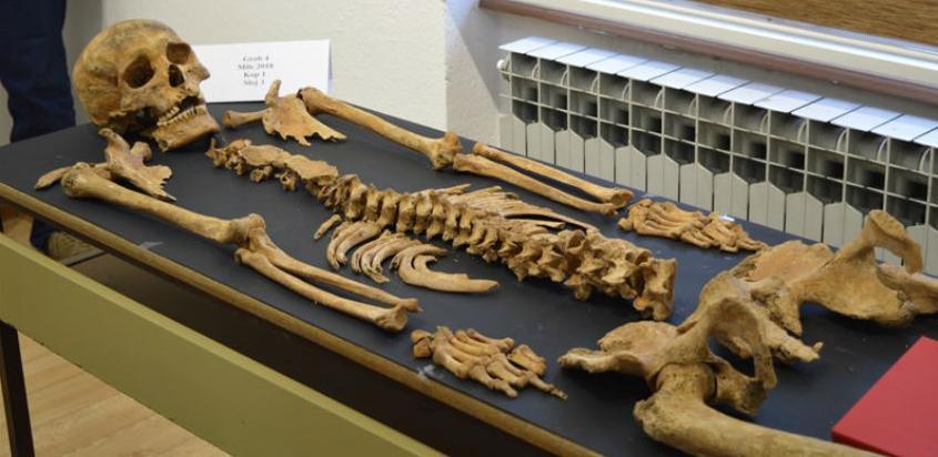 Hiljadugodišnja historija: U Milima kod Visokog pronađeno pet kompletnih skeleta