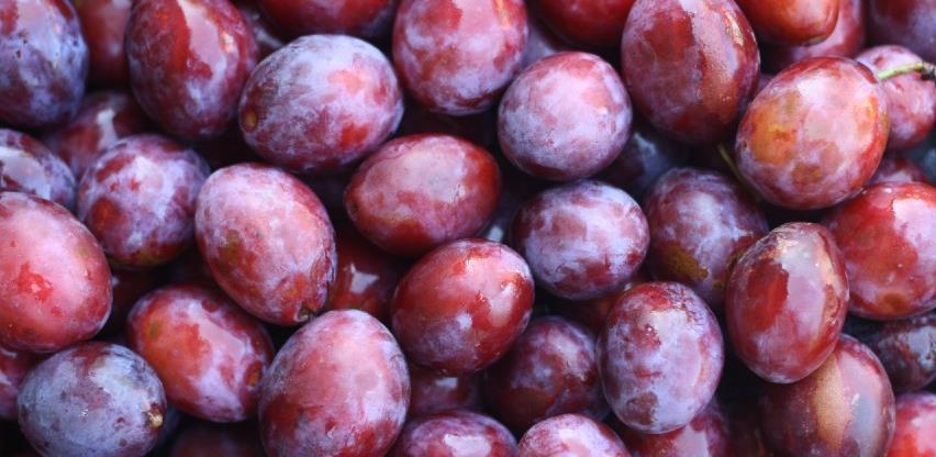 Zabranjen uvoz 400 kilograma šljiva iz Sjeverne Makedonije