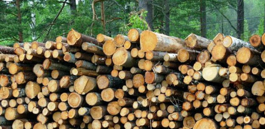 Proizvodnja šumskih sortimenata u BiH  u 2017. manja za 10,18 posto