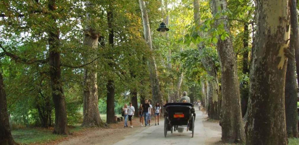 Ilidža zauzima vodeću poziciju u turizmu