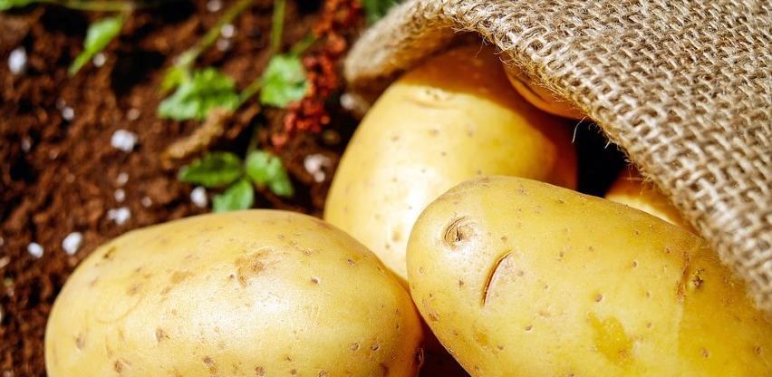 Manji prinos diže cijenu krompira u BiH