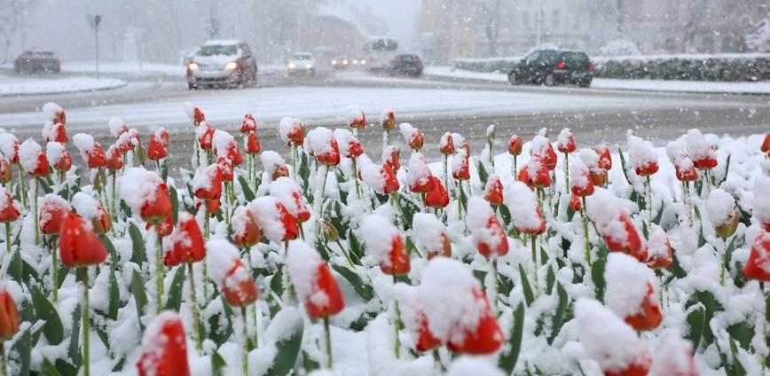 Ovo se rijetko viđa: Fotografije iz Karlovca koje ponovno dokazuju da je priroda čudo