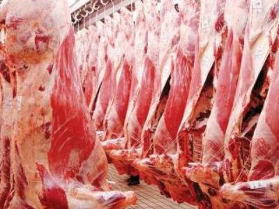 Izvoznici odahnuli: Izvoz junećeg mesa u Tursku počet će u junu
