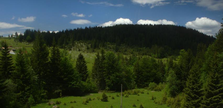 Romanija: Proljetno pošumnjavanje ukupne vrijednosti 53.105 KM