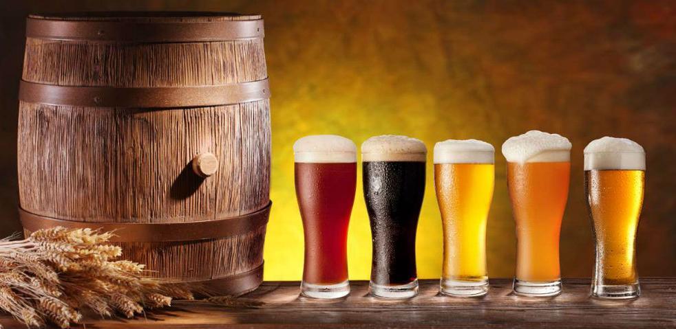 Evo kako je poslovalo pet pivara u BiH