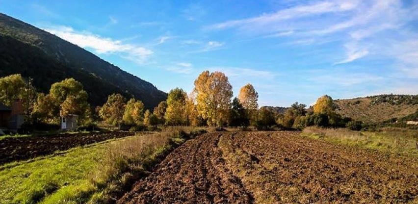 Značajne površine obradivog zemljišta u BiH neobrađene i zapuštene