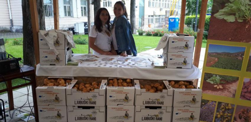 Mladi krumpir postao ljubuški brend prepoznatljiv širom BiH