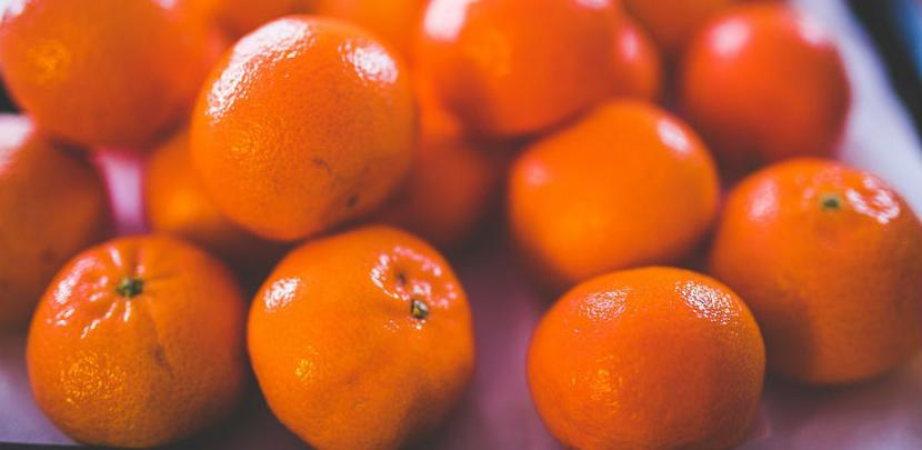 Grade tvornicu za preradu mandarina, najavljeno zapošljavanje 50 ljudi