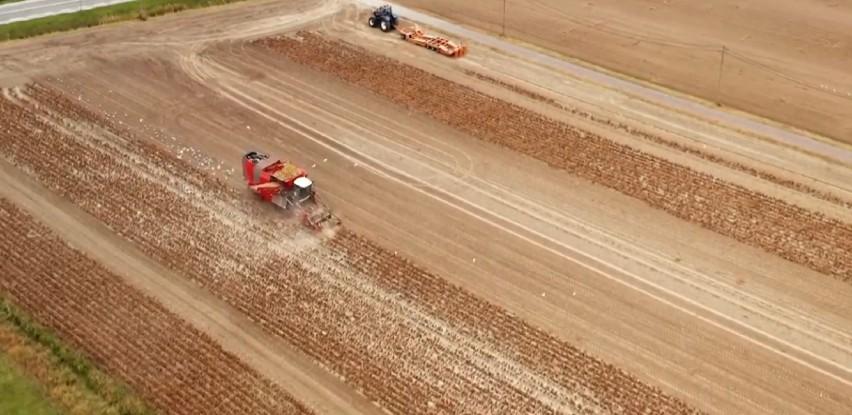 Na 900 hektara zemljišta u Odžaku rastu mnogobrojne sjemenske kulture