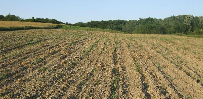 Udruženje poljoprivrednika FBiH traži isplatu poticaja do 10. juna