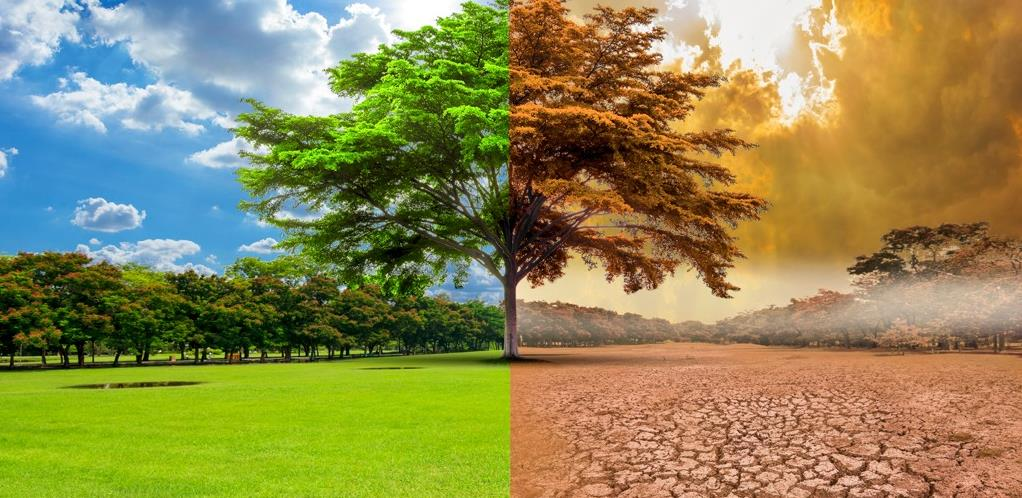 Borba protiv klimatskih promjena - Izvršna vlast EU za veliku reviziju zakona