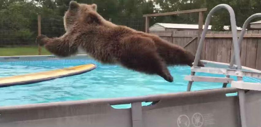 Brčkanje u bazenu nikad nije izgledalo zabavnije