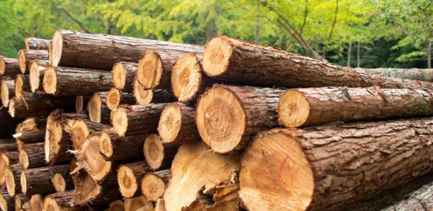 Proizvodnja šumskih sortimenata u BiH veća za 14,83 posto