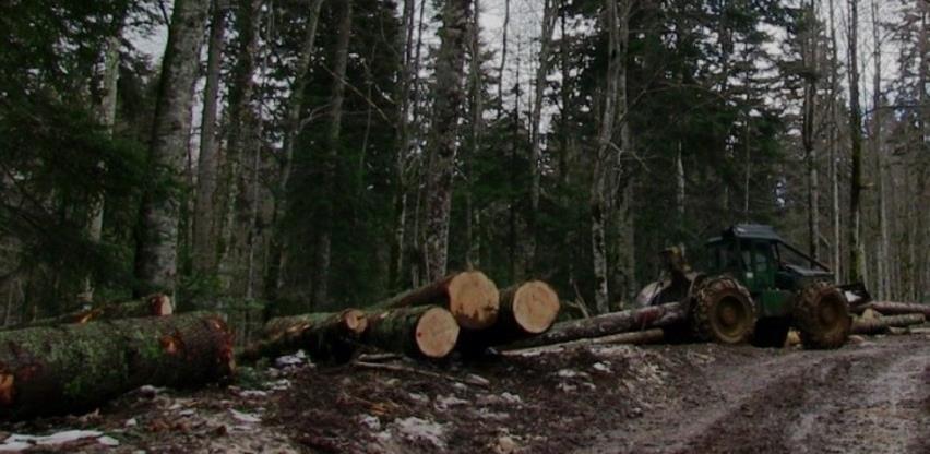 Smanjenje proizvodnje i prodaje šumskih sortimenata u FBiH