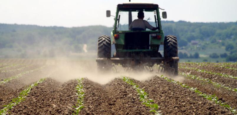 SSP nije dao očekivane rezultate u BiH: Poljoprivreda izgubila desetine mil. KM