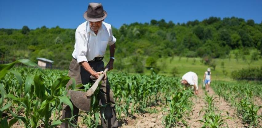 Da li je FBiH dobila 15 hiljada novih poljoprivrednika ili potrošača budžeta?