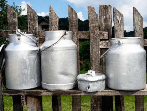 Češka Razvojna agencija pomaže razvoj mljekarstva u Brčko distriktu