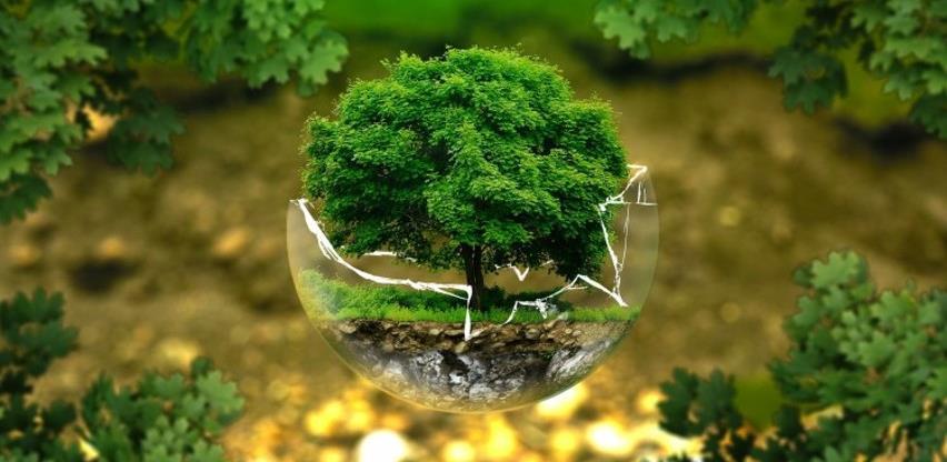 Bioekonomija: Koncept koji obećava i tehnološke i društvene promjene