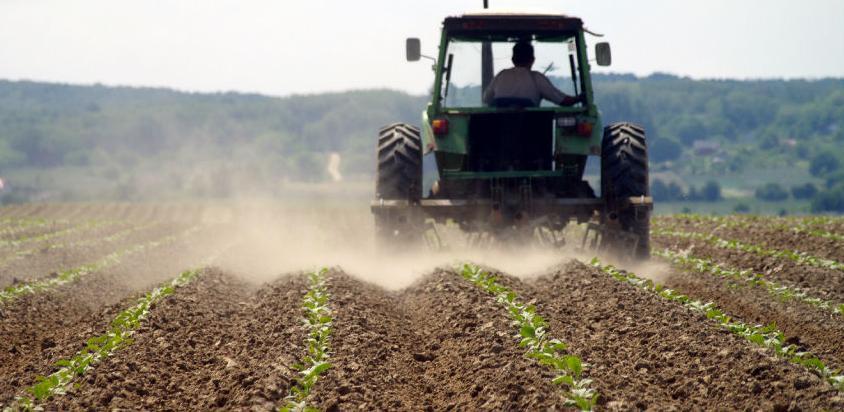 Poljoprivredi u FBiH 125 miliona bespovratnih sredstava