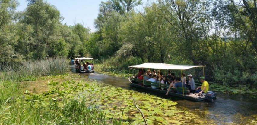 """""""Vodena staza"""" nova turistička atrakcija Hutovog blata"""