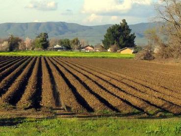 Forum u Travniku: Poljoprivreda ključni sektor razvoja BiH