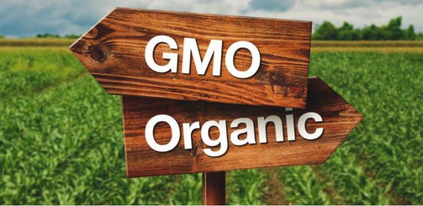 Konferencija o označavanju i kontroli GMO-free prehrambenih proizvoda u BiH