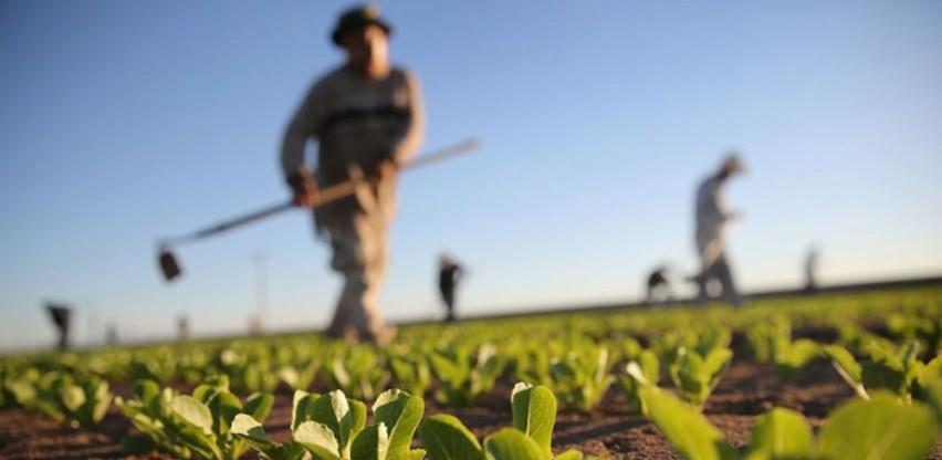 Otkupne cijene poljoprivrednih proizvoda stagniraju godinama