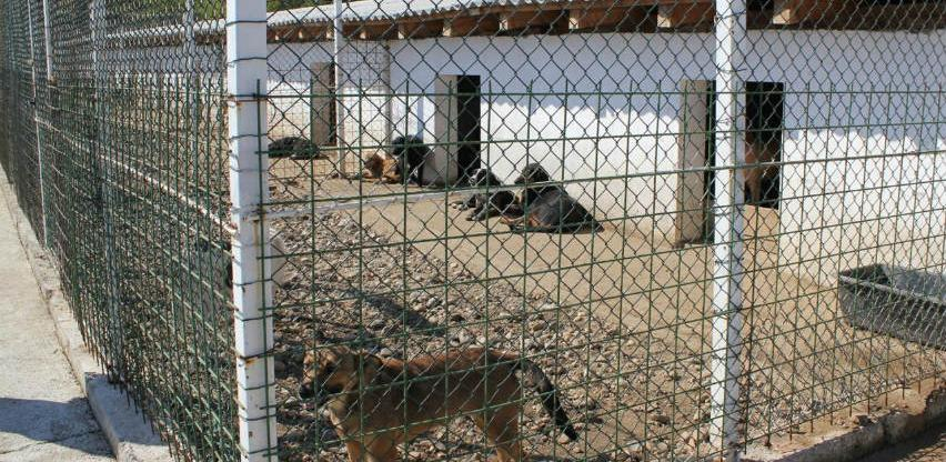 U Srebrenici uskoro izgradnja prihvatilišta za pse lutalice
