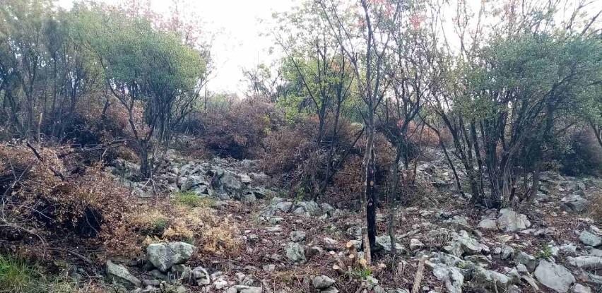 Pripadnici FUCZ pronašli i uklonili četiri mine na Koridoru Vc Mostar Jug - Buna