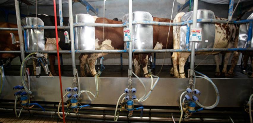 Proizvodnja mlijeka u RS rekordna, farmera nikad manje