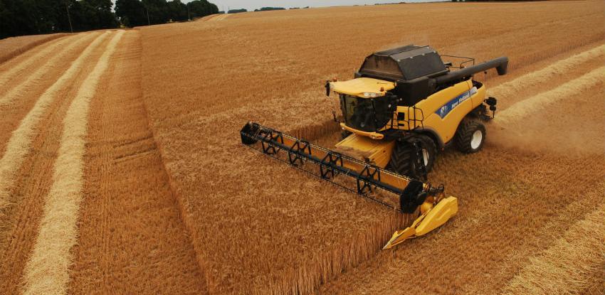 Broj zaposlenih u poljoprivredi porastao za sedam posto, a plaće za tri posto