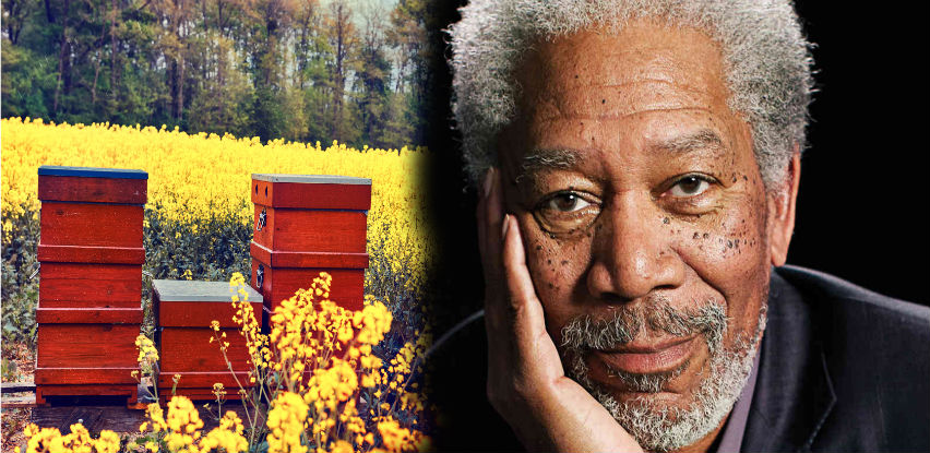 Morgan Freeman glumu zamijenio pčelarstvom