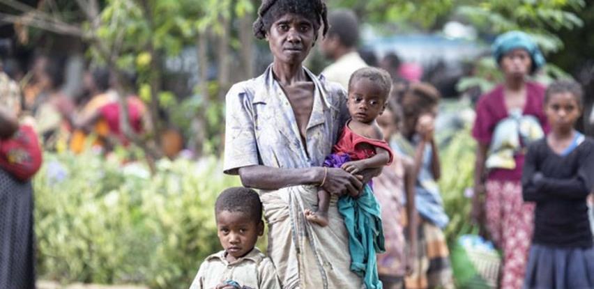 Madagaskar na rubu gladi, stanovnici prisiljeni jesti skakavce i kaktuse