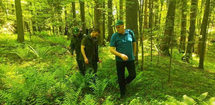 Jedina BiH prašuma obiluje biodiverzitetom, ipak na samom smo dnu evropskih zaštićenih područja