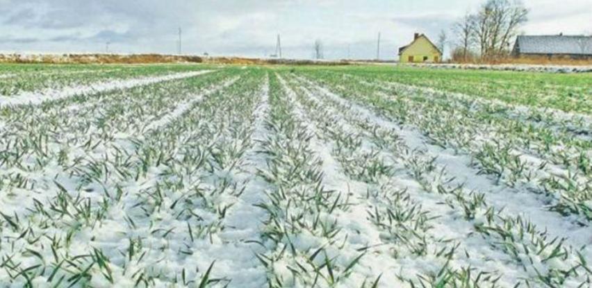 Idealne prilike za poljoprivrednike mogle bi pokvariti poplave