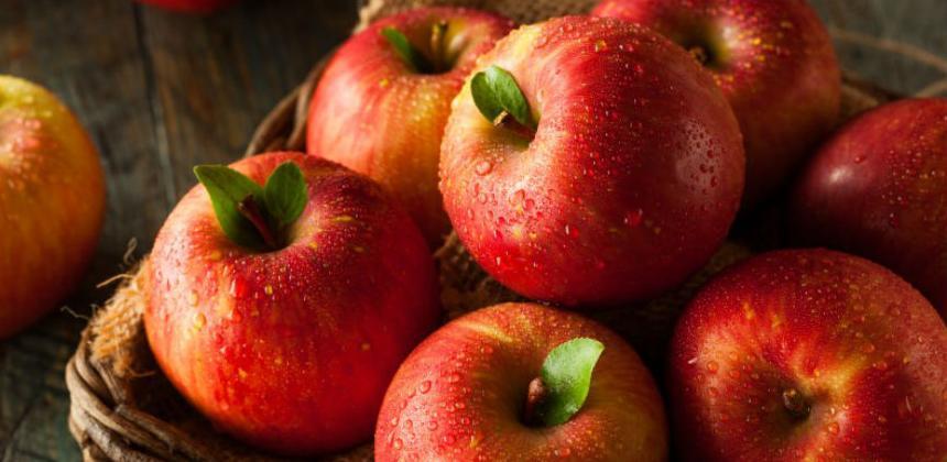 Šarović: Šteta od zabrane izvoza jabuka još nesaglediva