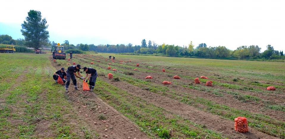 Općina Novi Grad raspisala javni poziv za korištenje zemljišta u državnoj svojini