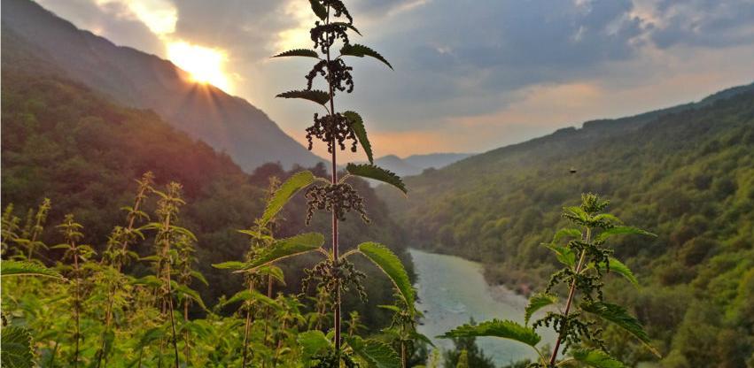 Otvoren poziv: 90.000 eura za prekogranični region Drina-Tara, Drina-Sava i Krš